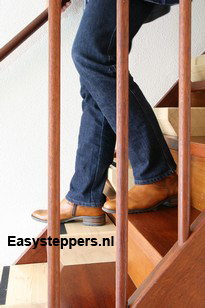 easysteppers, easystepper, traplift
